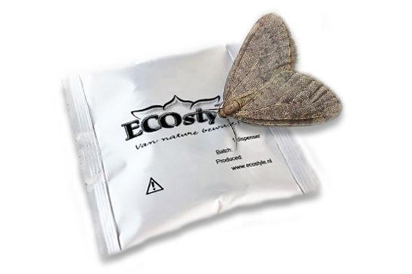 Kleine wintervlinder bestrijden met een feromonen van Ecostyle