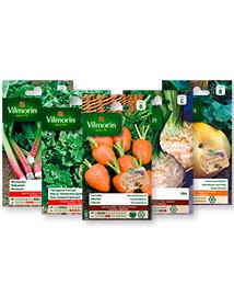 Zaden pakket: Vergeten groenten van Vilmorin 2e