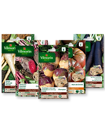 Zaden pakket: Vergeten groenten van Vilmorin